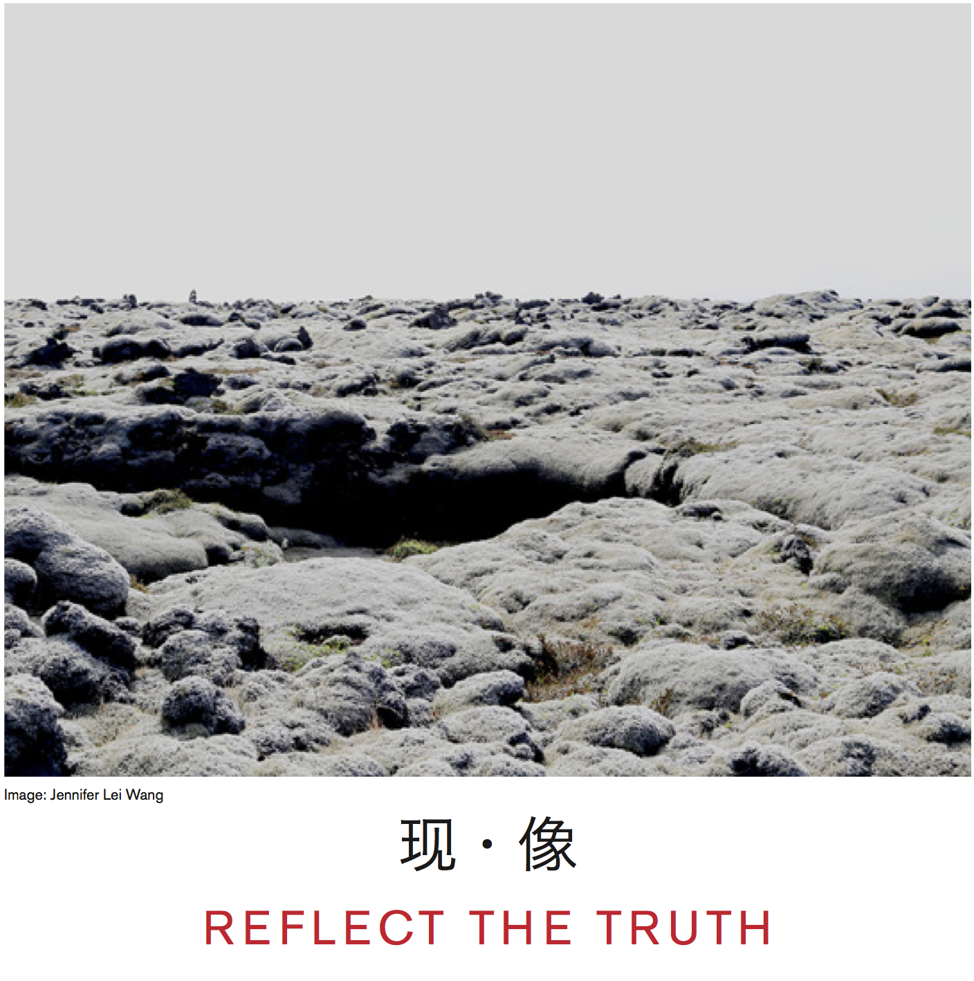 Reflect The Truth